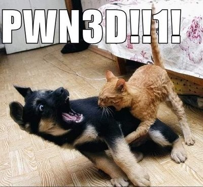 cat pwns dog alsation puppy pwned lol cat macro