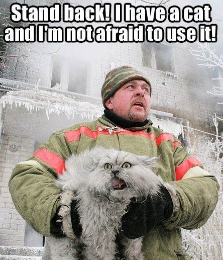 man holding cat winter