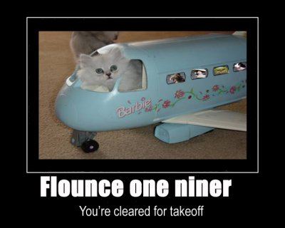 flounce one niner cleared takeoff lol cat macro