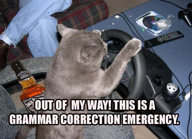cat driving get out of my way grammar emergency lol cat macro