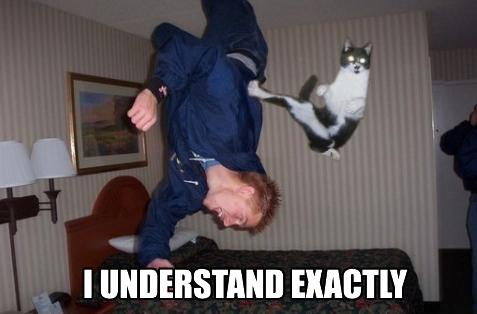 i_understand