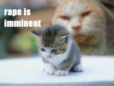 rape imminent raep meme kitten cat macro