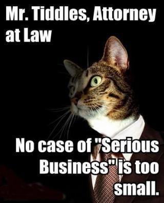 lawyer_srsbsns