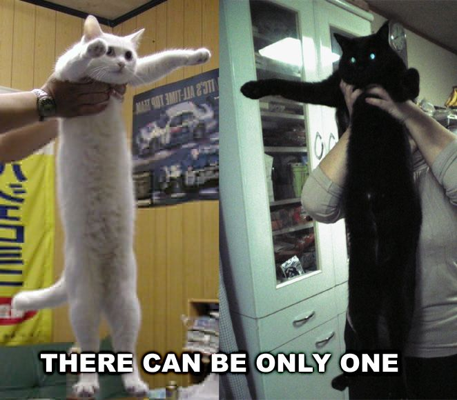 longcat_only_one_cat_macro there can be only one cat macros