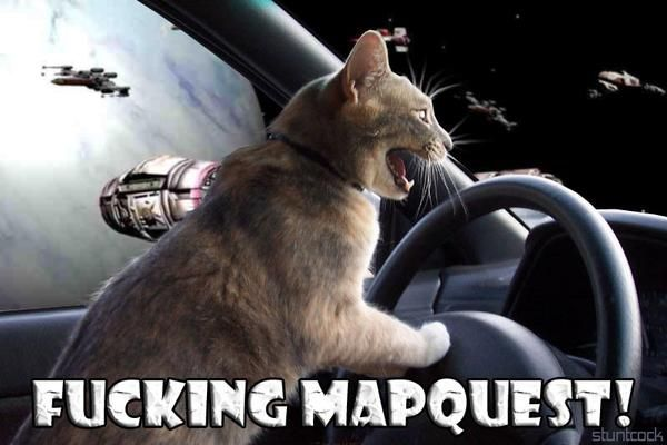 fucking mapquest cat macro