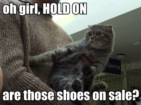 shoes on sale lol cat macro
