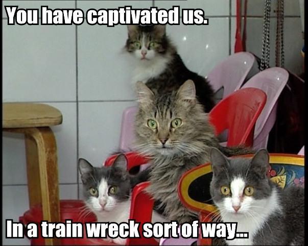 trainwreck trainwreck cat macros