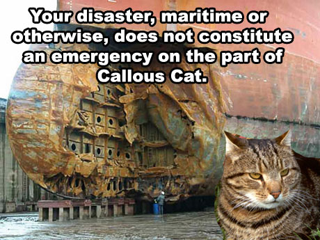 callous cat disaster maritime emergency failboat cat macro