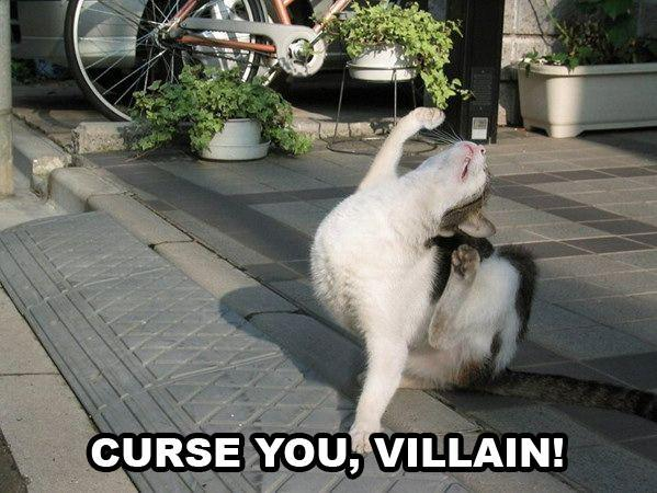 curses curse you villain lol cat macro