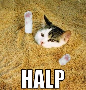 halp drowning sand lol cat macro