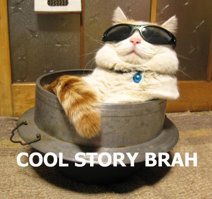 cool story bro brah shades sunglasses lol cat macro