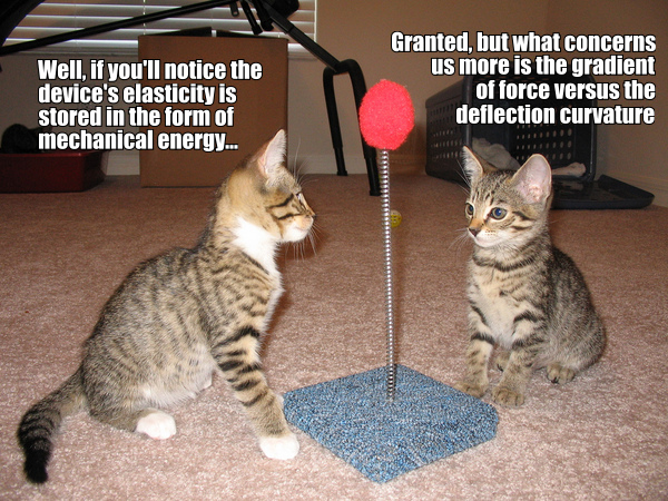 science physics kittens lol cat macro