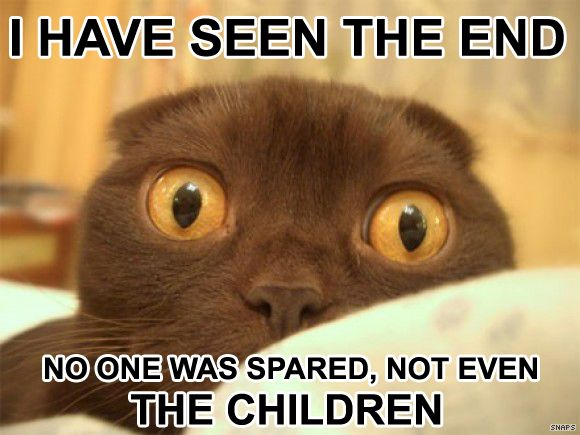 doom cat seen end no-one spared children apocalypse lol cat macro