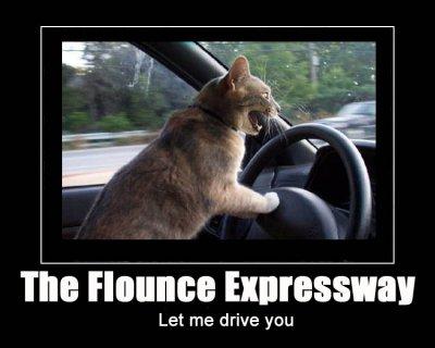 flounce expressway highway road driving lol cat macro