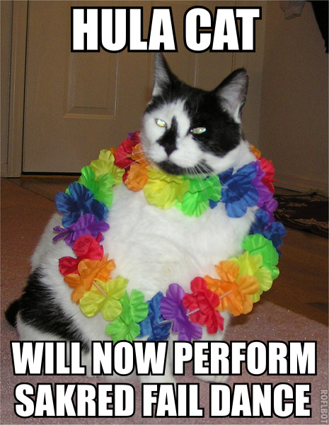 hula hawaii lei rainbow sacred dance fail fat lol cat macro