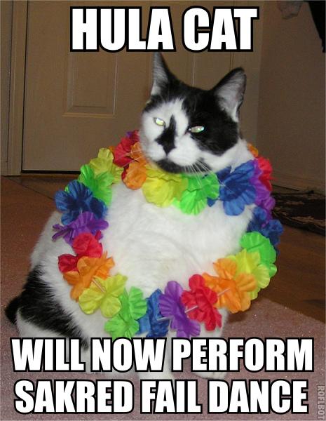 hula hawaii lei rainbow sacred dance fail fat lol cat macro
