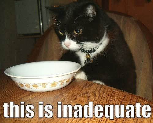 this is inadequate empty breakfast cereal soup bowl lol cat macro