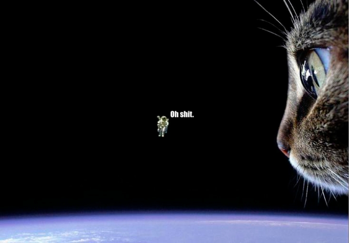 oh shit astronaut outer space planet lol cat macro