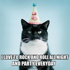 party rock n roll every day night hat birthday fun time lol cat macro
