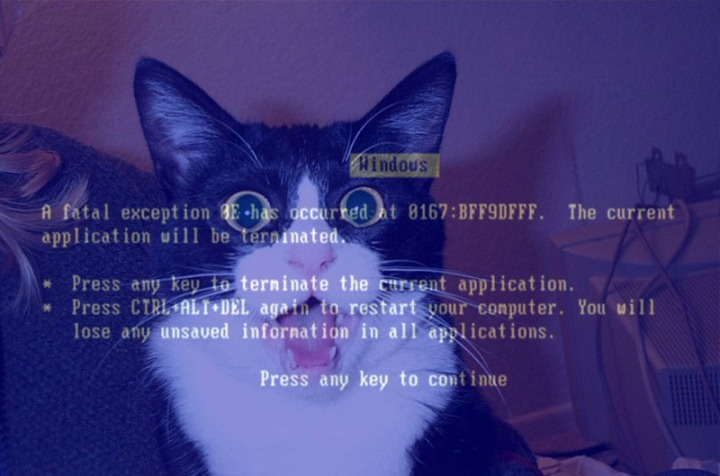 pc crash windows application terminate error message lol cat macro