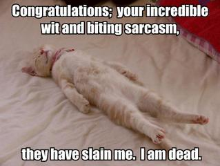 congratulations wit sarcasm irony slain killed me dead ded blargh lol cat macro