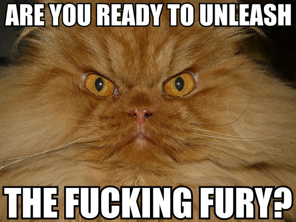 unleash the fucking fury caps lock rage raeg lol cat macro