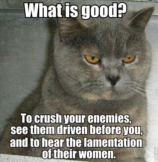 conan the barbarian movie quote crush enemies hear lament cat macro