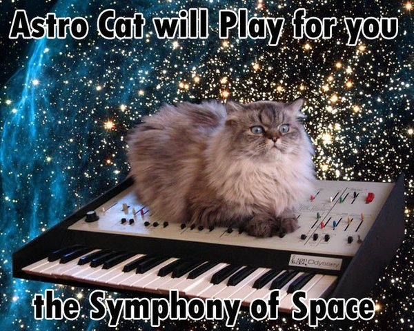 astro cat symphony of space piano lol cat macro