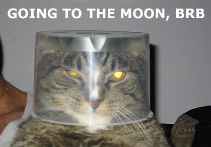 astronaut moon cat brb lol cat macro