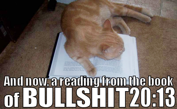 christianity reading from bible book bullshit lol cat macro
