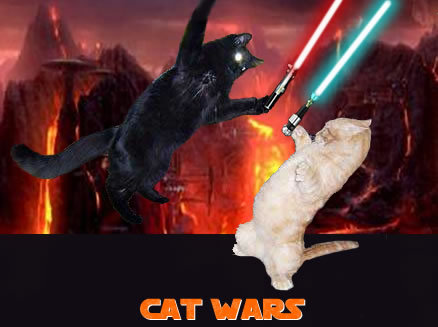 cat wars star wars macro war lol cat macro