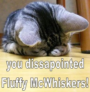disappointed fluffy mcwhiskers facepalm lol cat macro
