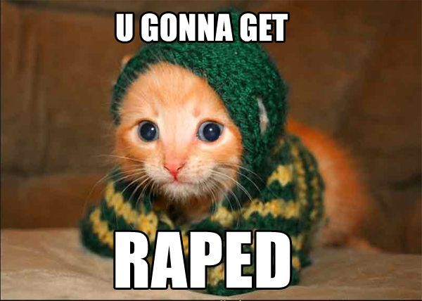 gonna get raped raep kitten lol cat macro