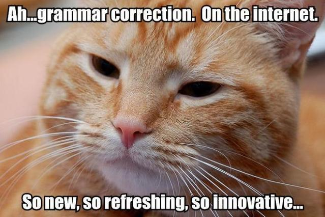 Most random thing you've seen or done today on CB? - Page 3 Grammar_correction_cat