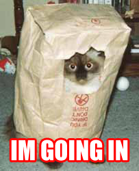 im going in war attack ambush paper bag lol cat macro