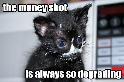 money shot degrading porn kitten lol cat macro