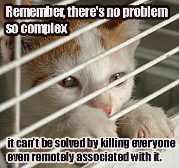 no problem so complex cage bars prison lol cat macro