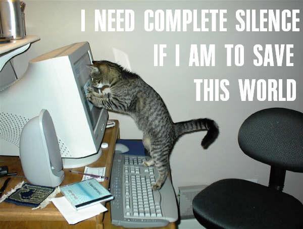 complete silence save world computer pc internets lol cat macro