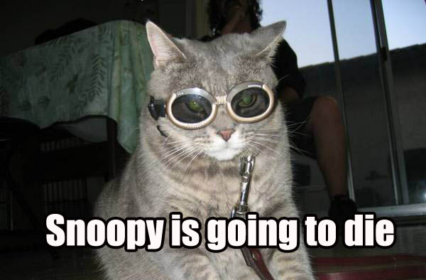 snoopy is going to die flying goggles red baron cat macro