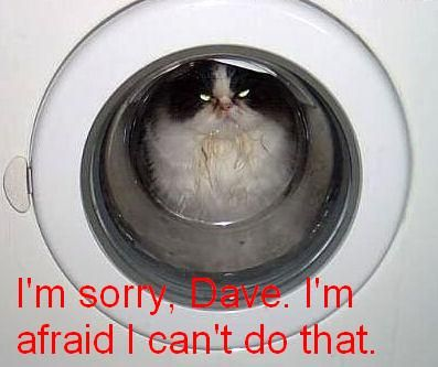 im sorry dave cant do that hal 2001 space odyssey lol cat macro