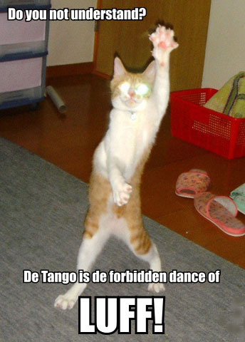 tango forbidden dance of love romance lol cat macro