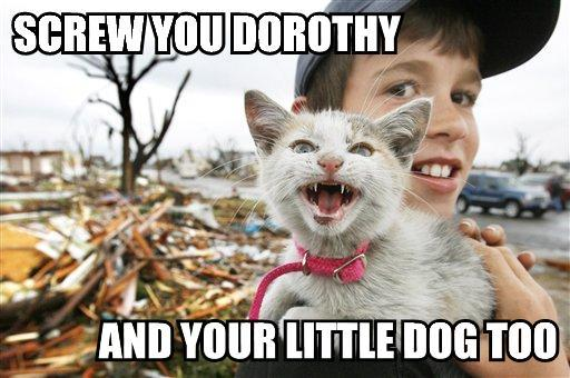 wizard of oz dorothy tornado lol cat macro