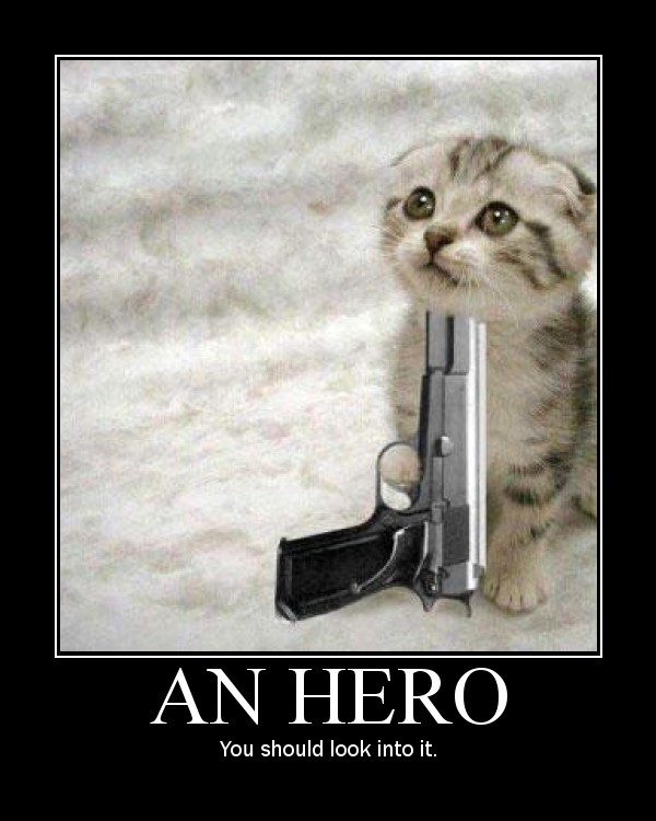 an hero kitten gun meme lol cat macro