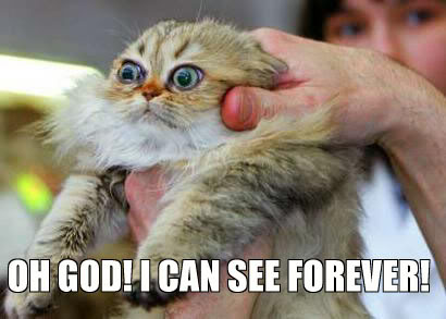 oh god i can see forever cthulu lol cat macro