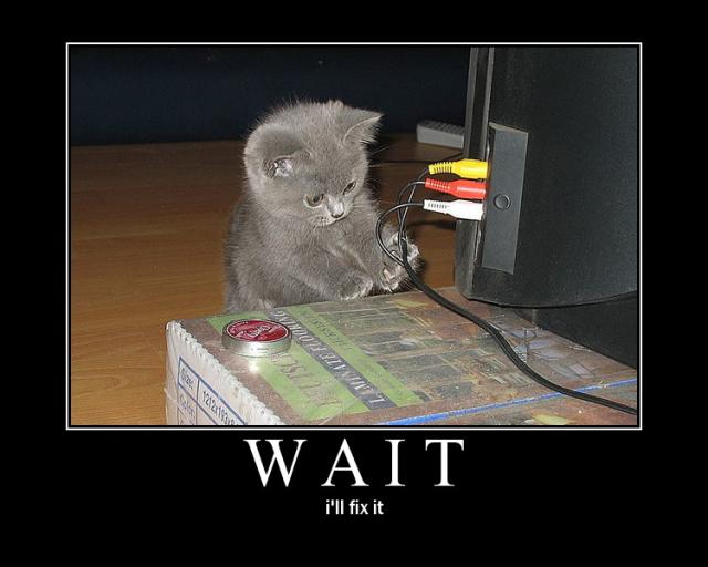 wait ill fix it computer pc wires cables kitten lol cat macro