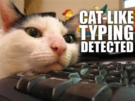 cat like typing detected keyboard computer lol cat macro