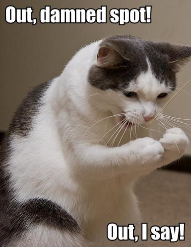 lady macbeth damned spot shakespeare lol cat macro