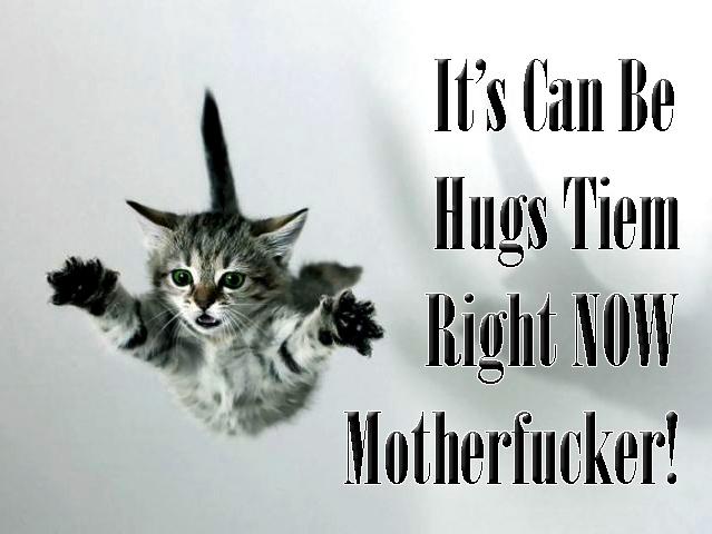 is it can be hugs tiem now motherfucker meme kitten lol cat macro
