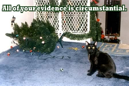 circumstantial evidence christmas xmas tree guilty lol cat macro