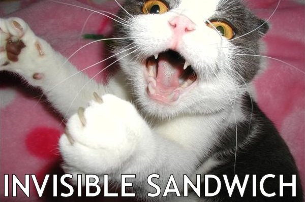 invisible sandwich meme lol cat macro